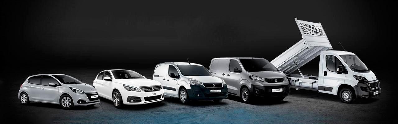 Peugeot Profesional ofertas home