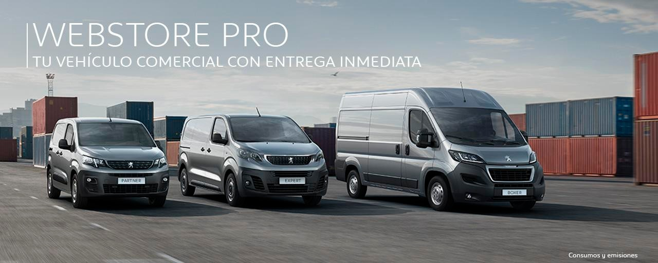 Peugeot Websstore PRO