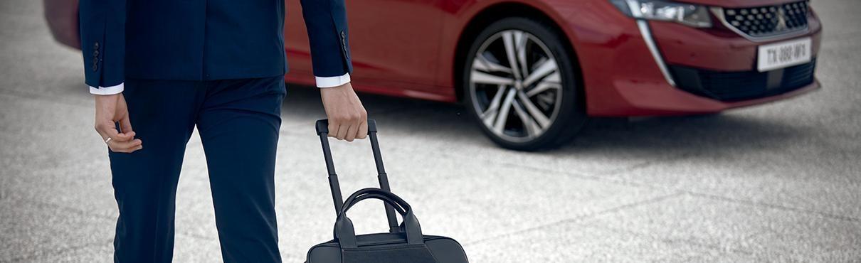 Empresas - Peugeot Goods In transit