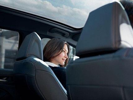 Peugeot 308 - Gran techo panorámico con cortina de ocultación