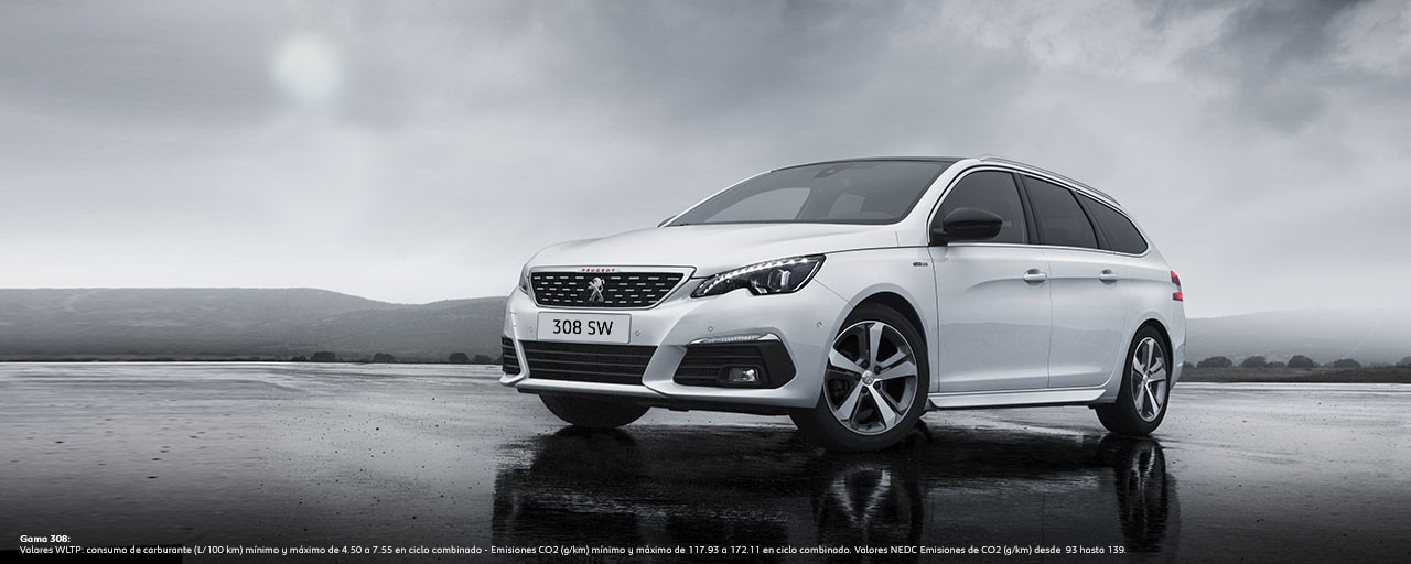 Peugeot 308 SW - Coche para profesionales